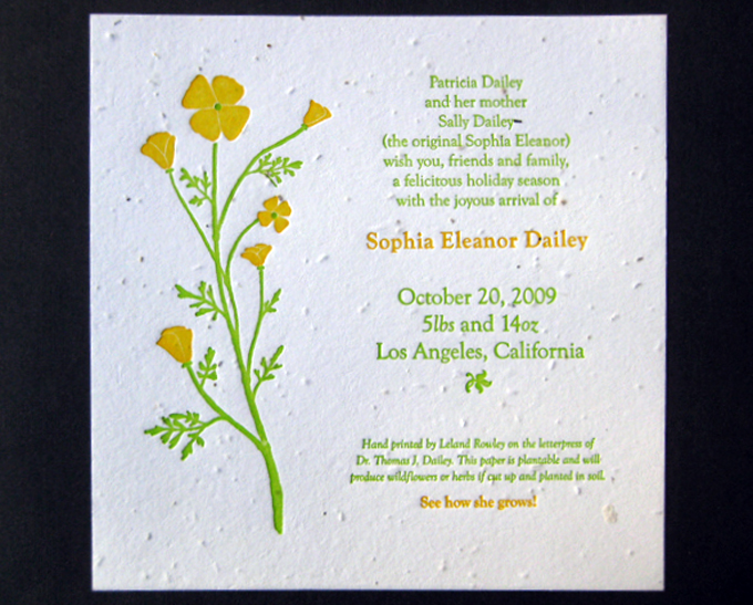Sophia | Birth Announcement
